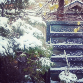 Northwoods Pinspiration: First Snow Day